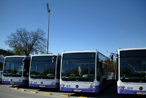 autobuze STPT