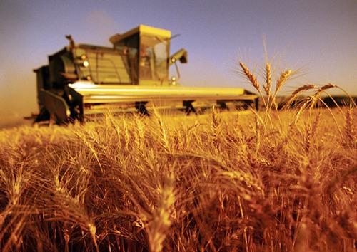 agriculturi