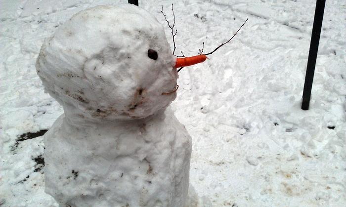 iarna la timisoara12