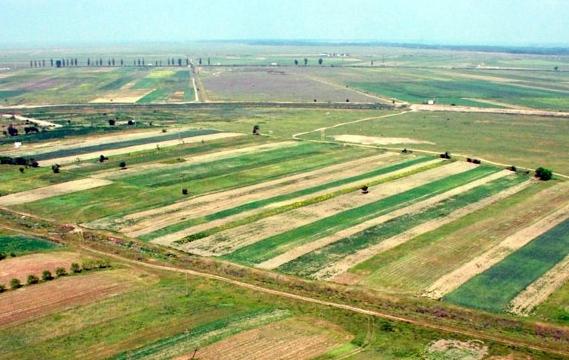 Terenuri agricole