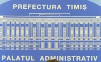 prefectura timis