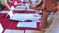 alegeri Timisoara