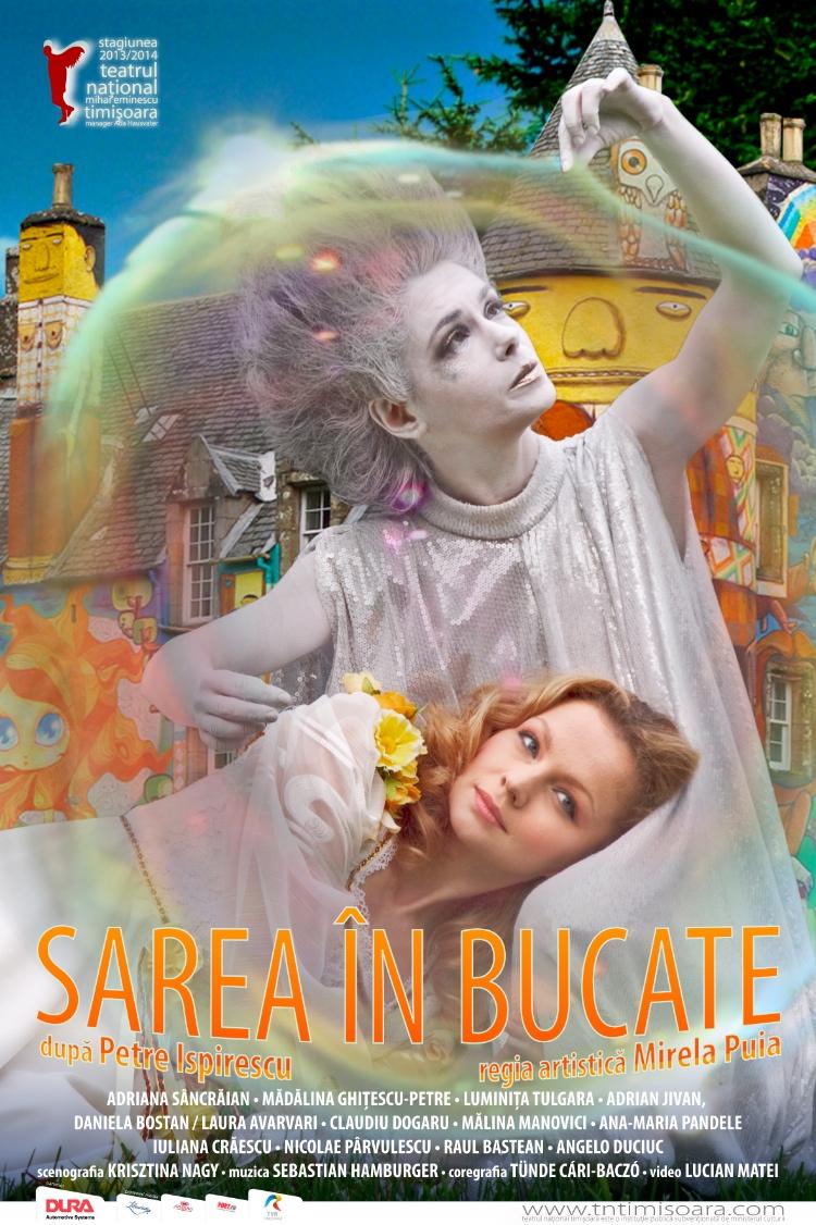 SAREA IN BUCATE poster