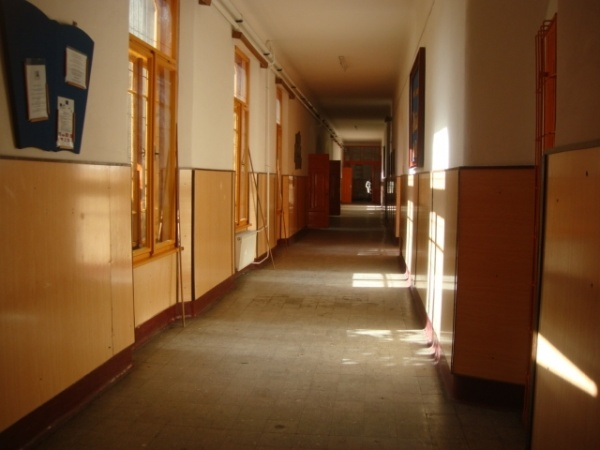 hol scoala