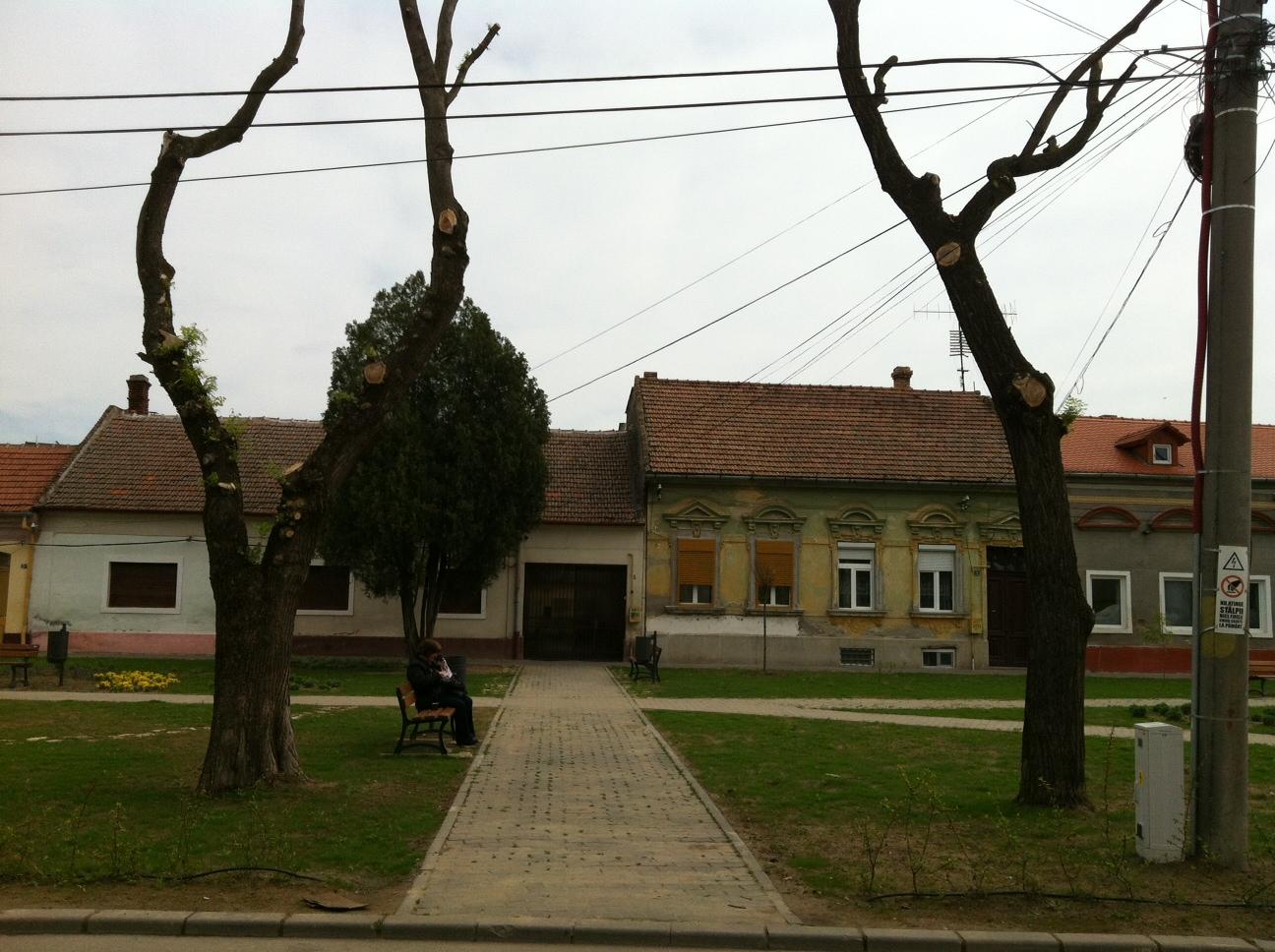 parcul adamachi