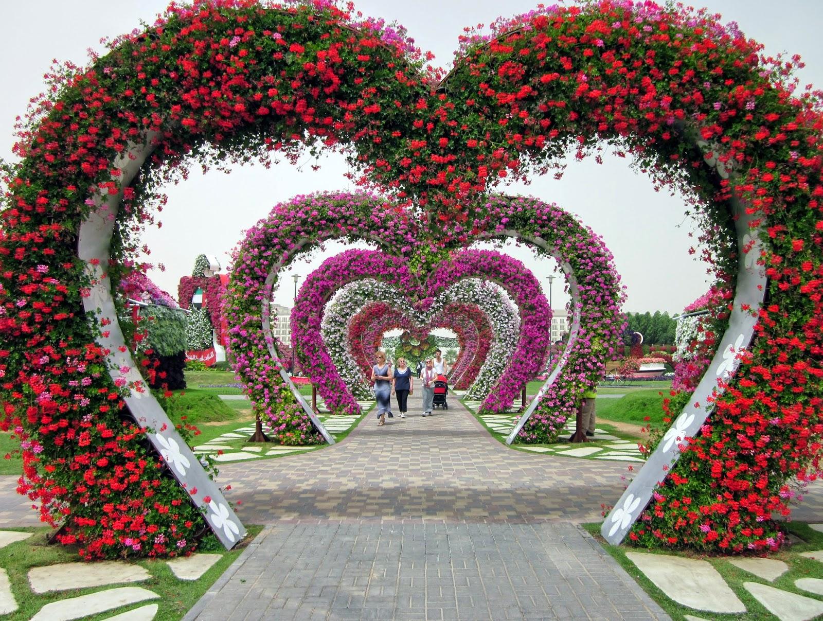 miracle garden1