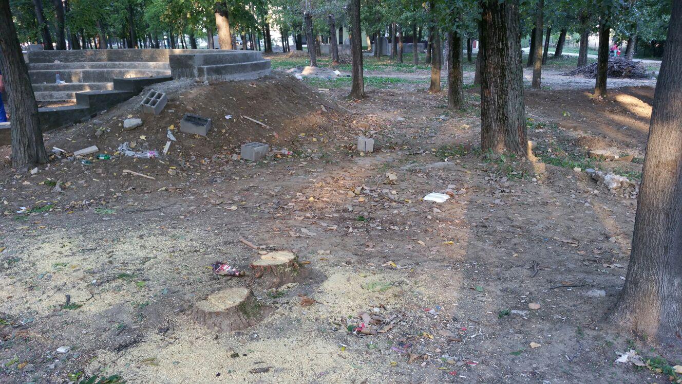 parcul padurice4