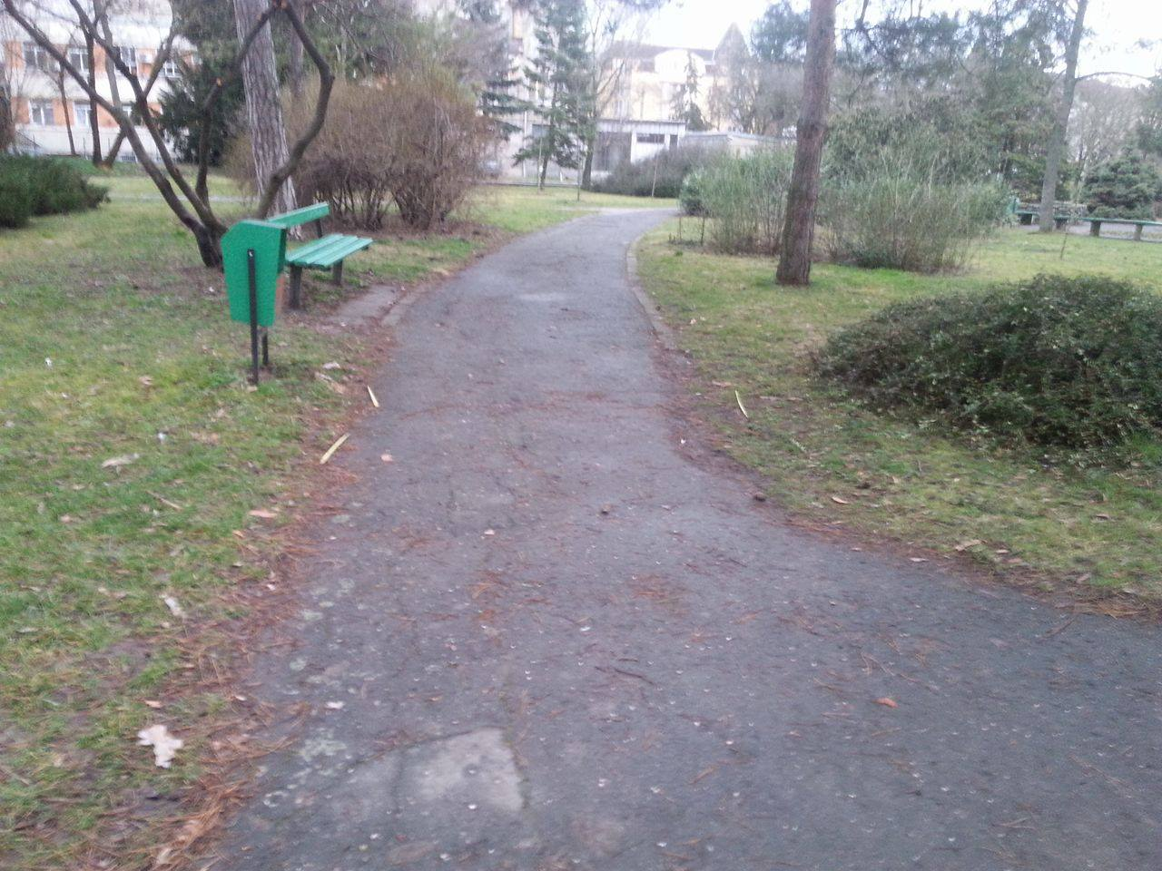 parcul botanic1