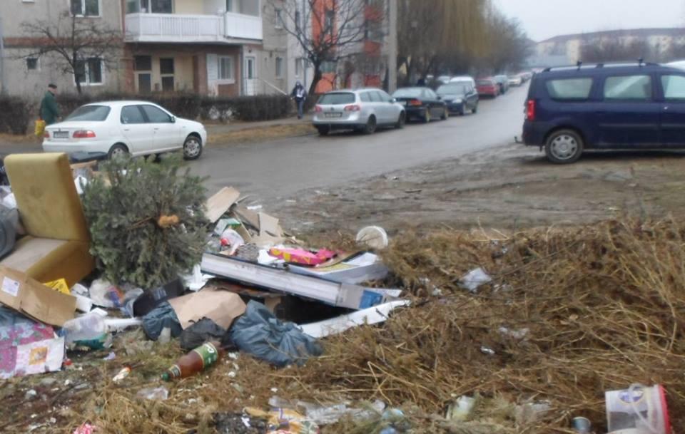 gunoaie pe strada