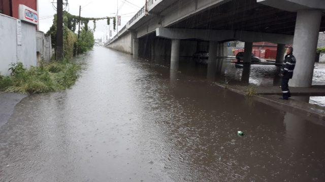 inundatii timis