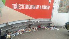curatenie Timisoara