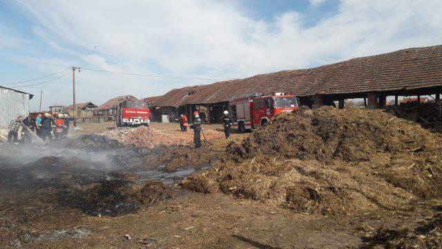 Incendiu la o fermă din Sântana