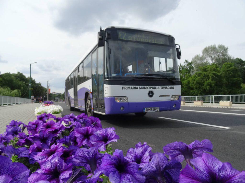 Primăria Timișoara e hotărâtă să dezvolte transportul public