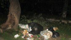 Gunoaiele, printre problemele semnalate de cetățeni în Calea Aradului