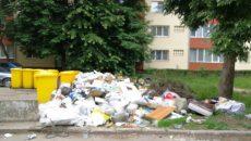 Gunoi abandonat pe străzi în Timișoara