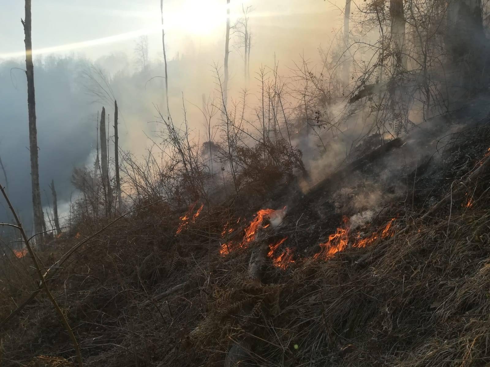 Fermierii care incendiază resturile vegetale de pe terenurile agricole fără autorizație vor fi arși la buzunar