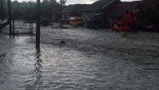 Cod galben de inundații