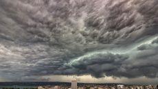 Cod galben de furtună