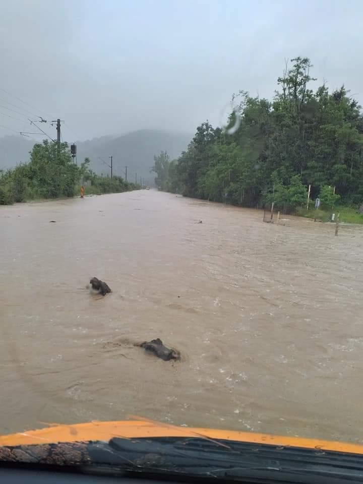 Cod portocaliu de inundații în vestul țării