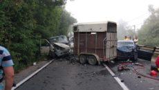 Accident mortal în vestul țării