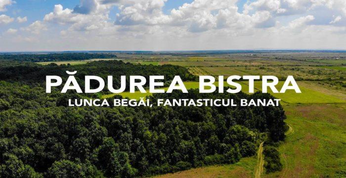 Pădurea Bistra. Sursă foto: padureabistra.ro