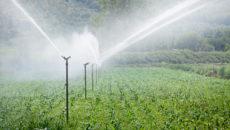 Sate din Timiș, în pericol de a rămâne fără apă