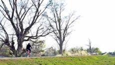 pista de biciclete