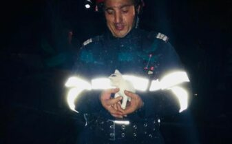 pompier pui de pisica