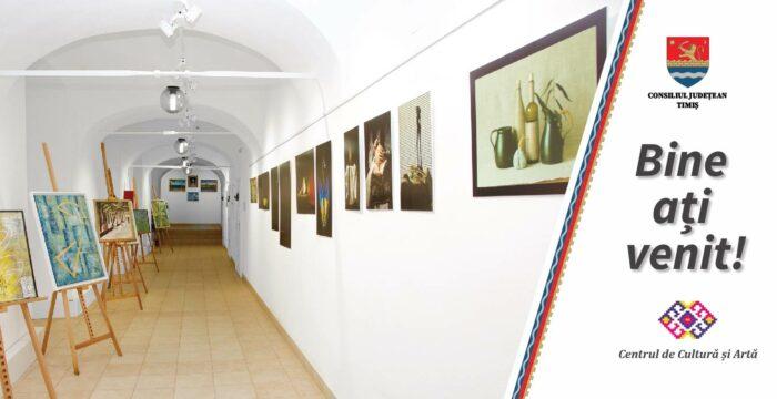 Centrul de Cultura si Arte
