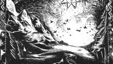 miorita aualeu