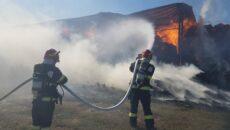 incendiu Torontalului