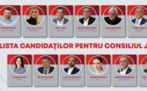candidati PSD CJ Timis