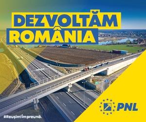 PNL Timiș