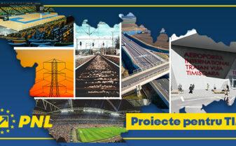 proiecte Timis