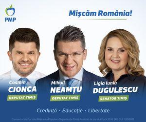 PMP Timiș